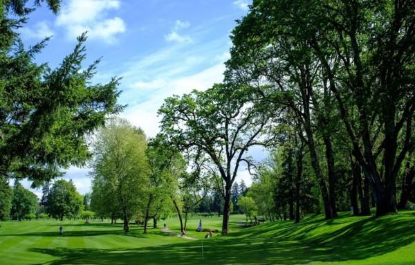Salem Golf Club in Salem, OR :: Small Weddings ℠